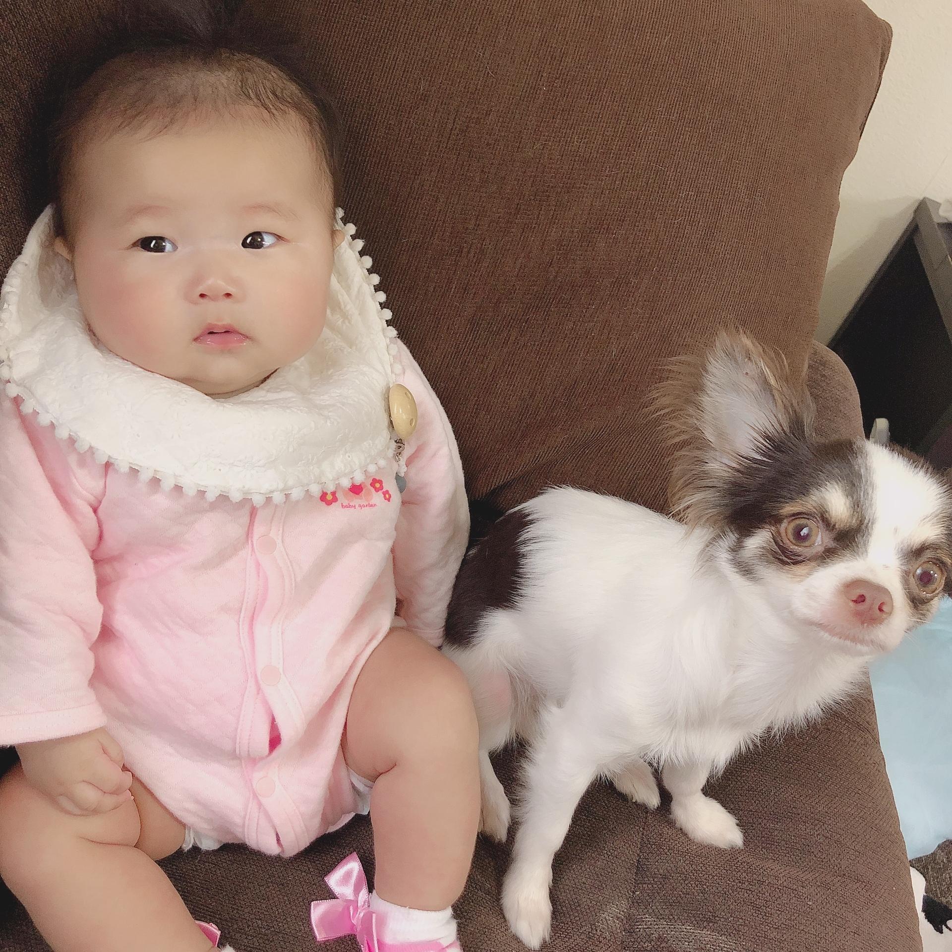 3ヶ月の娘の隣がいい